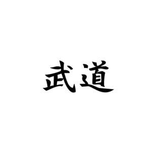 logo / budo sportkledingmerk
